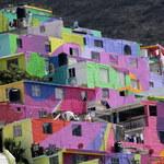 Koronawirus w Meksyku. Prezydent apeluje do gangów, by nie rozdawały paczek pomocowych