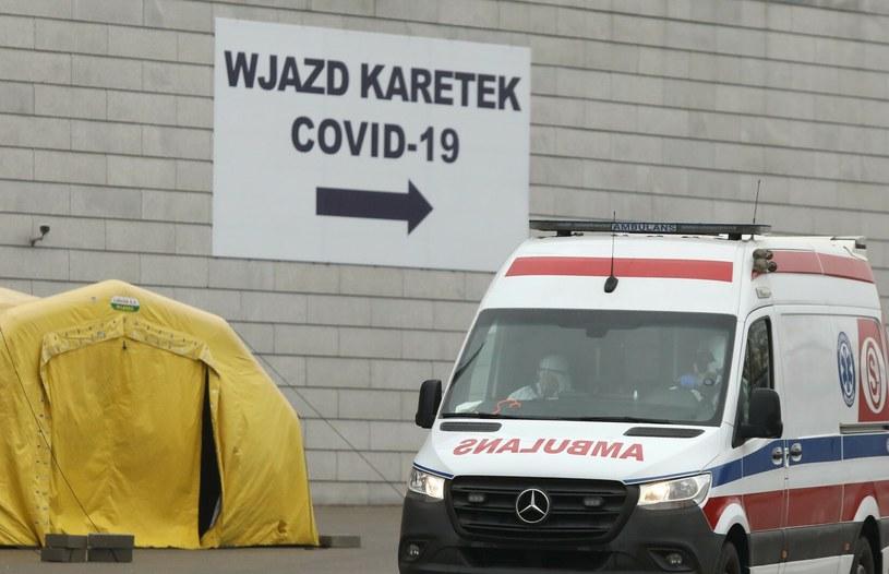 Koronawirus w Polsce /Stefan Maszewski /Reporter