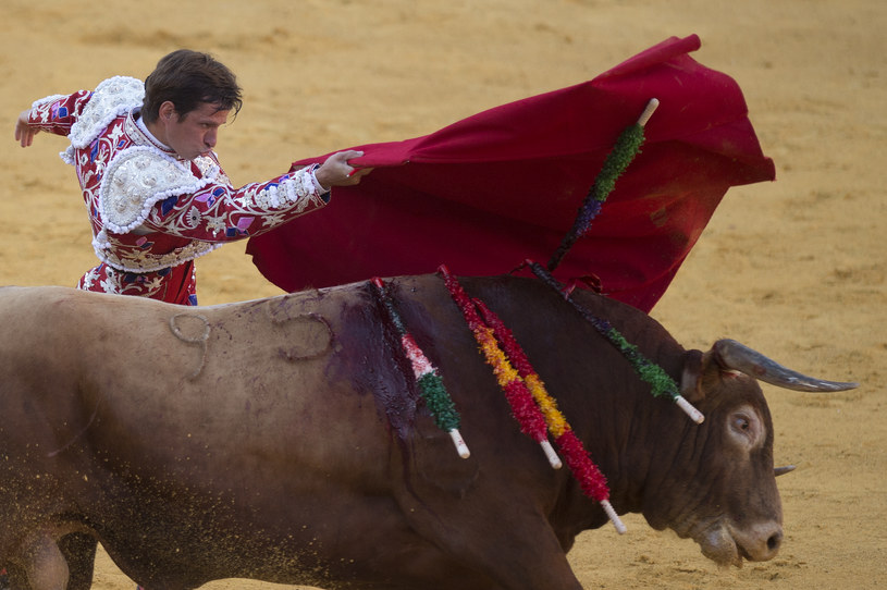 Korrida; zdj. ilustracyjne /AFP