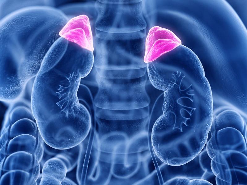 Kortyzol a zdrowie /©123RF/PICSEL