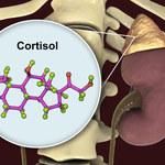 Kortyzol: Jak objawia się niedobór i nadmiar hormonu stresu?