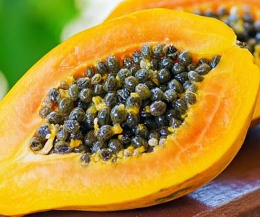 Korzyści zdrowotne papai