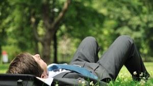 Korzystanie z urlopu wypoczynkowego w pierwszym roku zatrudnienia