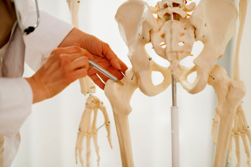 Kości to rusztowanie ciała. Warto zadbać o ich kondycję /123RF/PICSEL