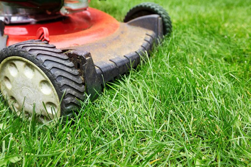 wznoszenie trawy)