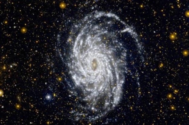 Kosmiczny teleskop GALEX wykonał wszystkie powierzone mu zadania /NASA