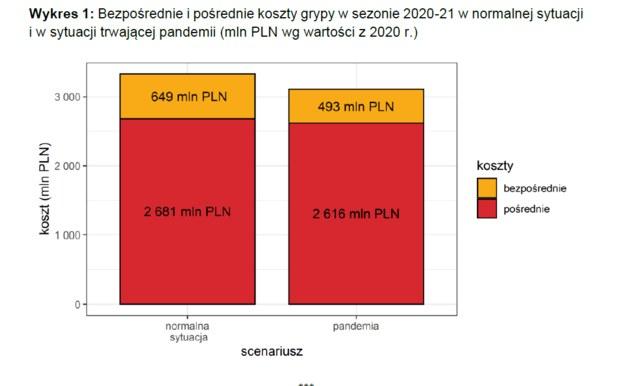 Koszty grypy w normalnej sytuacji i w czasie pandemii /Polski Instytut Ekonomiczny /Materiały prasowe