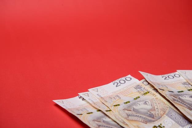 Koszty kredytu studenckiego są niezwykle niskie /©123RF/PICSEL