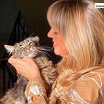 Kot Ewy Wachowicz zrobił furorę