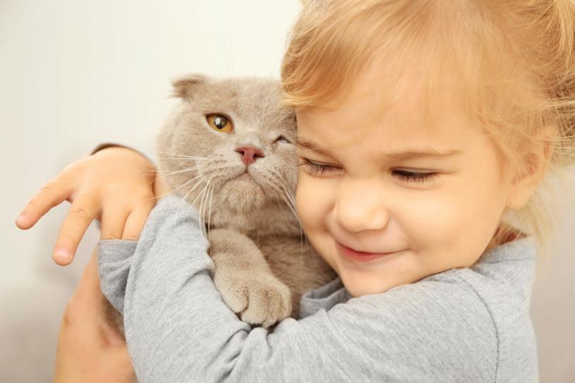 Kot może być towarzyszem dla dziecka! /123RF/PICSEL