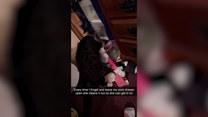 Kotka buszuje w szufladzie ze skarpetkami