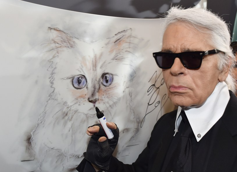 Kotka Choupette to największa miłość projektanta. Lagerfeld specjalnie dla niej zatrudnił dwie opiekunki /East News