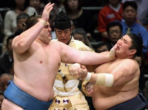 Kotomitsuki (z prawej) znalazł się w poważnych tarapatach /AFP