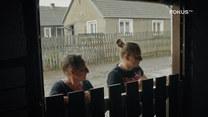 Kozy nie lubią deszczu