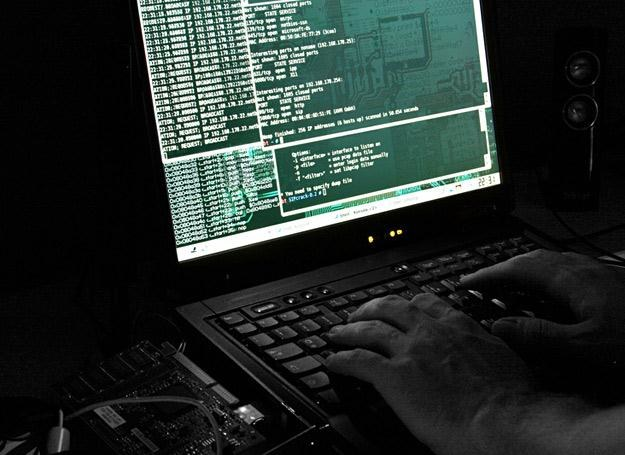 Kradzież 45 mln numerów kart kredytowych? Łatwizna! /© Panthermedia
