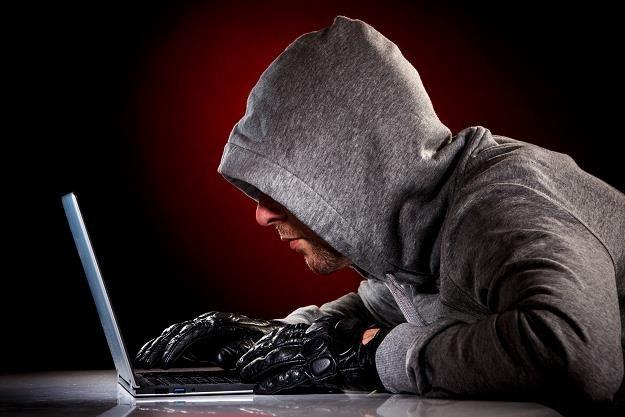 Kradzież danych to coraz częstsza praktyka /©123RF/PICSEL