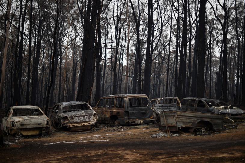 Krajobraz po pożarze, Nowa Południowa Walia /SAEED KHAN/AFP /AFP