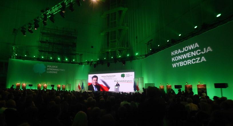Krajowej Konwencji Programowo-Wyborczej PSL /Radek Pietruszka /PAP