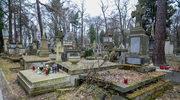 Kraków: Badacze odnaleźli niezidentyfikowane ludzkie szczątki