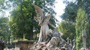 Kraków: Komunikacja we Wszystkich Świętych
