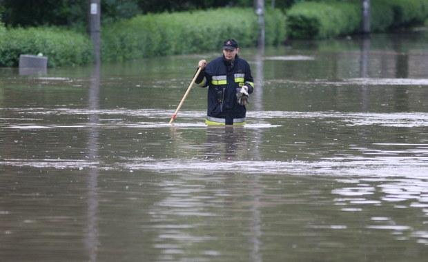 Kraków: Prądnik Czerwony pod wodą
