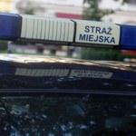 Kraków: Strażnicy miejscy potrąceni przez samochód. Podczas pościgu padły strzały