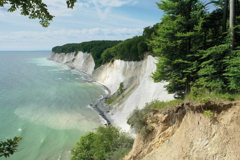 Kredowe wybrzeże na Rugii to krajobraz niczym z filmów fantastycznych /fot. Peter Lehmann/DZT /materiały promocyjne