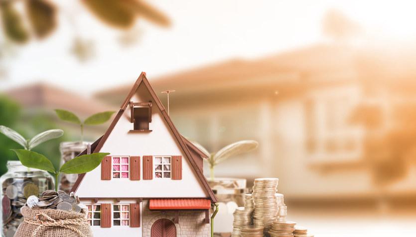 Kredyt czy pożyczka?