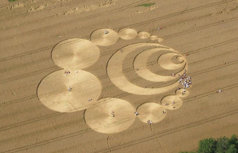 Kręgi w zbożu odkryte w Szwajcarii /Wikimedia Commons /domena publiczna