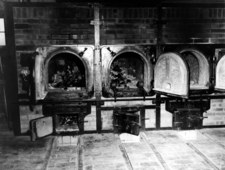 Krematoria. Rodzinny biznes Topfów