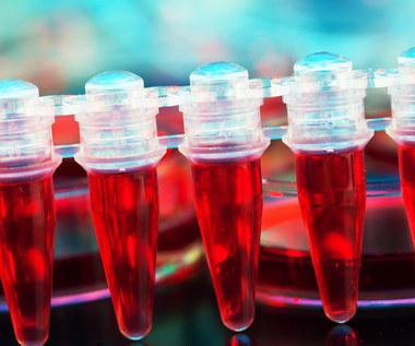 Krew pępowinowa: W jaki sposób może uratować życie?