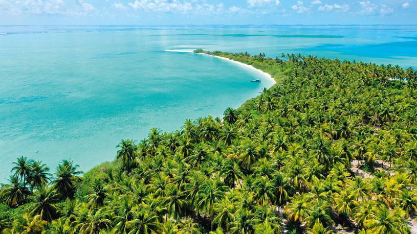 Król Arabii Saudyjskiej zainteresował się atolem Faafu, ale wpłacona zaliczka zniknęła w niewyjaśniony sposób /materiały prasowe