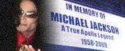 Michael Jackson zmarł 25 czerwca 2009 roku. Przedawkował silny środek znieczulający. Jego przedwczesna śmierć wstrząsnęła światem - nie tylko show biznesu.