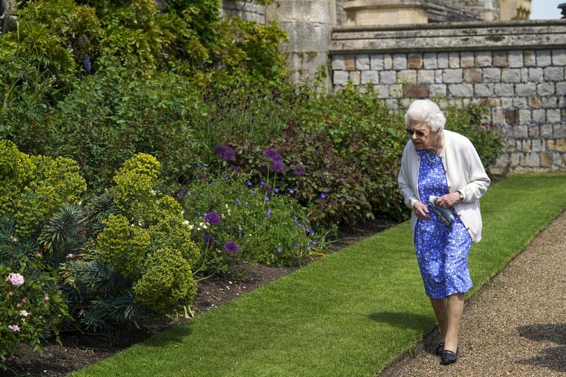 Królowa Elżbieta II udała się do pałacowych ogrodów by zasadzić wyjątkowy prezent /Steve Parsons - WPA Pool/Getty Images /Getty Images