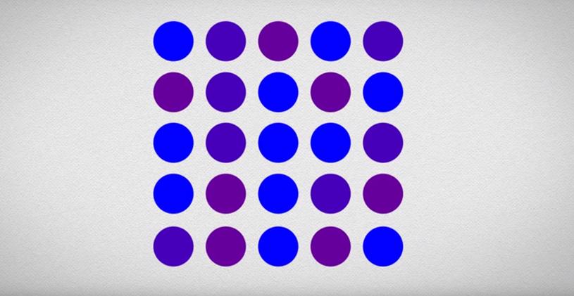 Kropki są fioletowe, czy niebieskie? /materiały prasowe