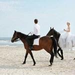 Krótki przewodnik po ślubach bezstresowych