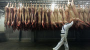 Krwawa robota masarza w Niemczech
