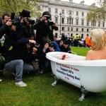 Krwawy protest modelki