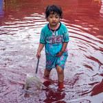 """Krwista rzeka nawiedziła Indonezję. """"Spełnia się biblijne proroctwo"""""""