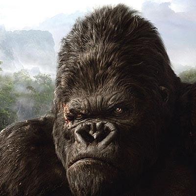 Krytycy dostrzegli aktorskie umiejętności King Konga /AFP