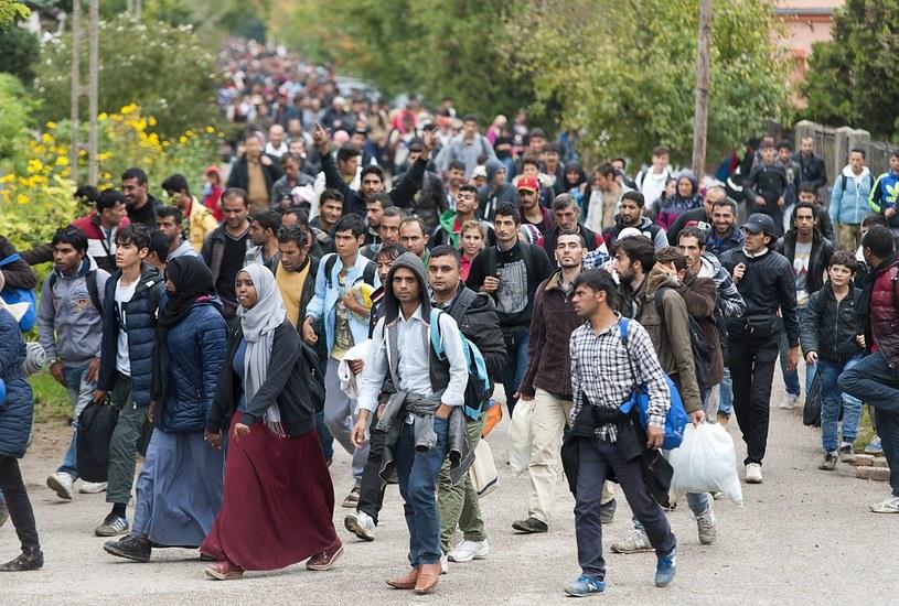 Kryzys imigracyjny, zdj. ilustracyjne /CSABA KRIZSAN  /PAP