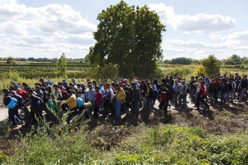 Kryzys migracyjny, zdj. ilustracyjne /Gyorgy Varga /PAP/EPA