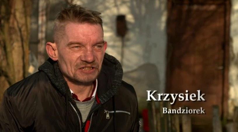 """Krzysiek zwany Bandziorkiem jest weteranem """"Chłopaków do wzięcia"""" /Polsat"""