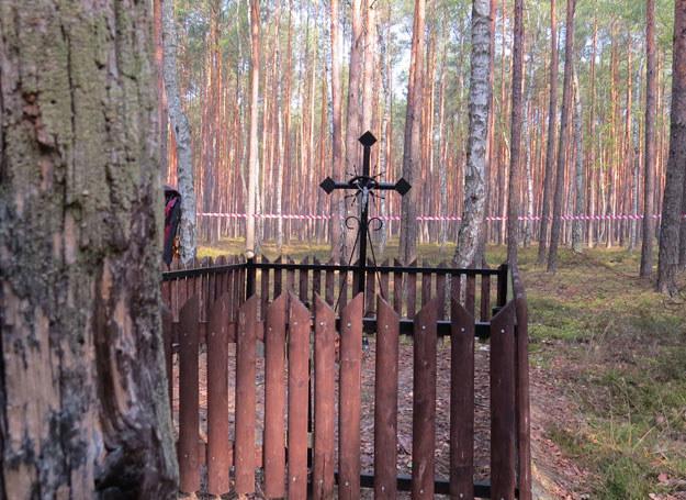 Krzyż, zdaniem Rady Ochrony Pamięci Walk i Męczeństwa, upamiętniał ofiary… hitlerowców /Odkrywca
