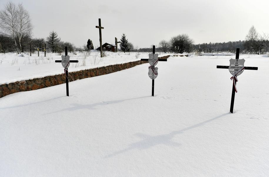 Krzyże na symbolicznych mogiłach przy pomniku upamiętniającym mord mieszkańców polskiej miejscowości Huta Pieniacka na Ukrainie /Darek Delmanowicz /PAP