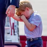 Książę George na polowaniu. PETA oburzona