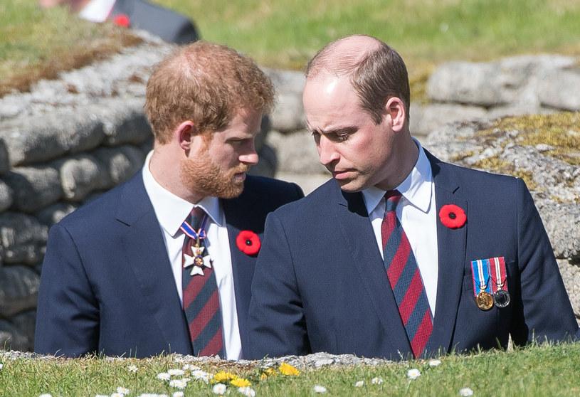 Książę Harry i książę William bardzo przeżyli śmierć matki. Byli wówczas jeszcze dziećmi /Samir Hussein /Getty Images