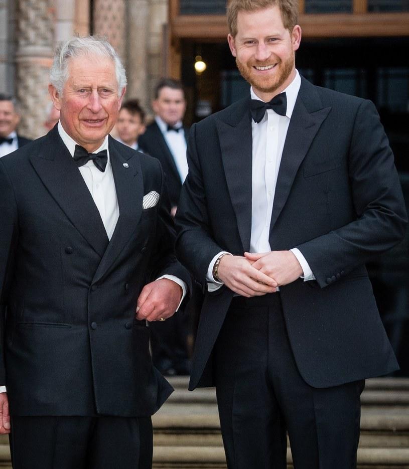 Książę Karol i Książę Harry /Pool/Samir Hussein / Contributor /Getty Images