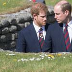 Książę William i Harry nie chcą się znać! Jest gorzej, niż wszyscy myśleli!