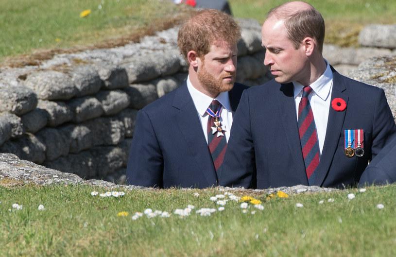 Książę William i Harry /Samir Hussein /Getty Images